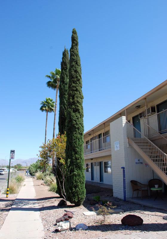 Winstel Terrace Apartments