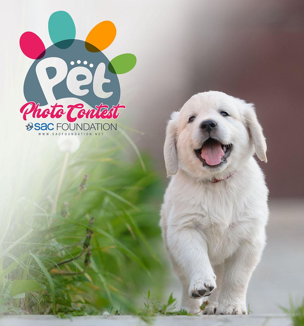 2018 Pet Photo Contest Voting
