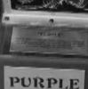 Purple Analogs