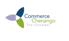 "Commerce Chenango names Lisa Natoli ""Young Professional"" 2013"
