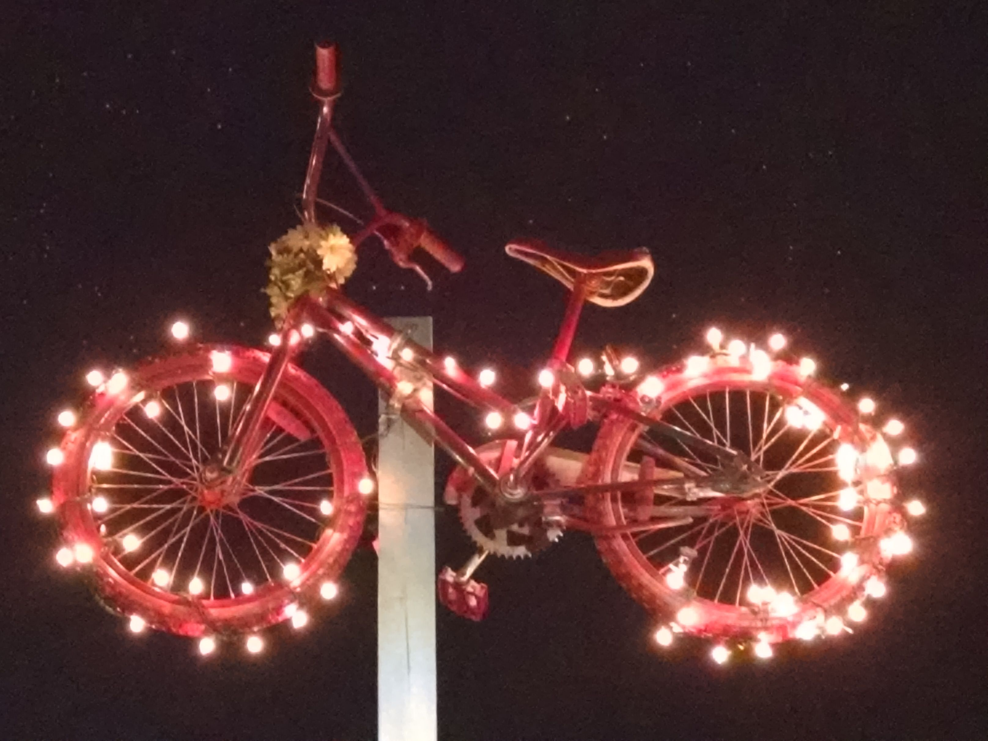 2015 Park Art - Bicycles