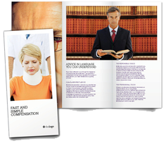 Trifold Brochure - Large