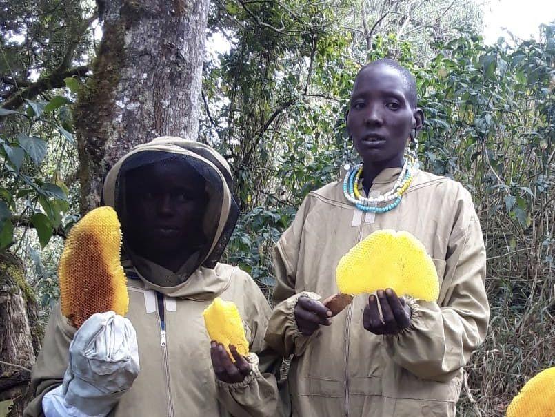 Masai Mama Honey