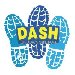 Dash for DS