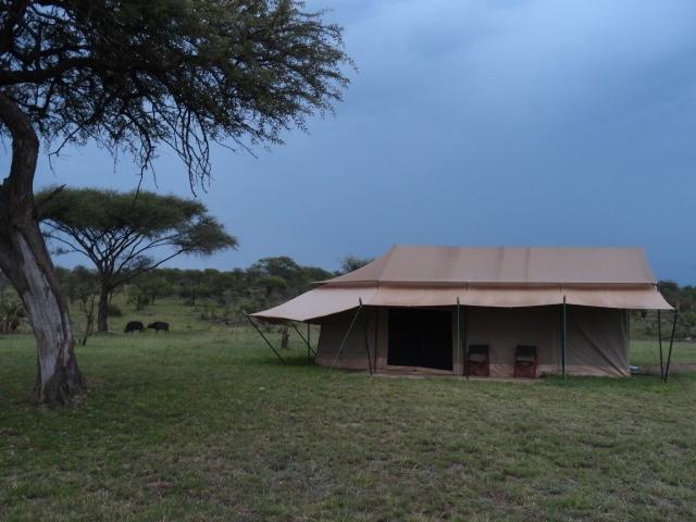 Mbugani Migration Camp - stanová chatka