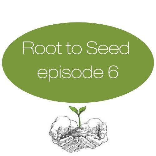 Episode 6: Starting From the Ground Up