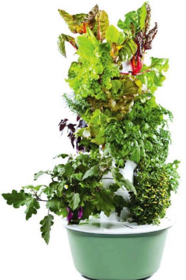 Tower Garden Program