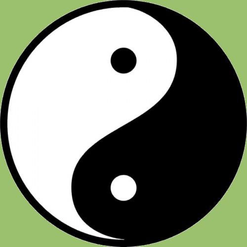 Qi Gong & T'ai Chi