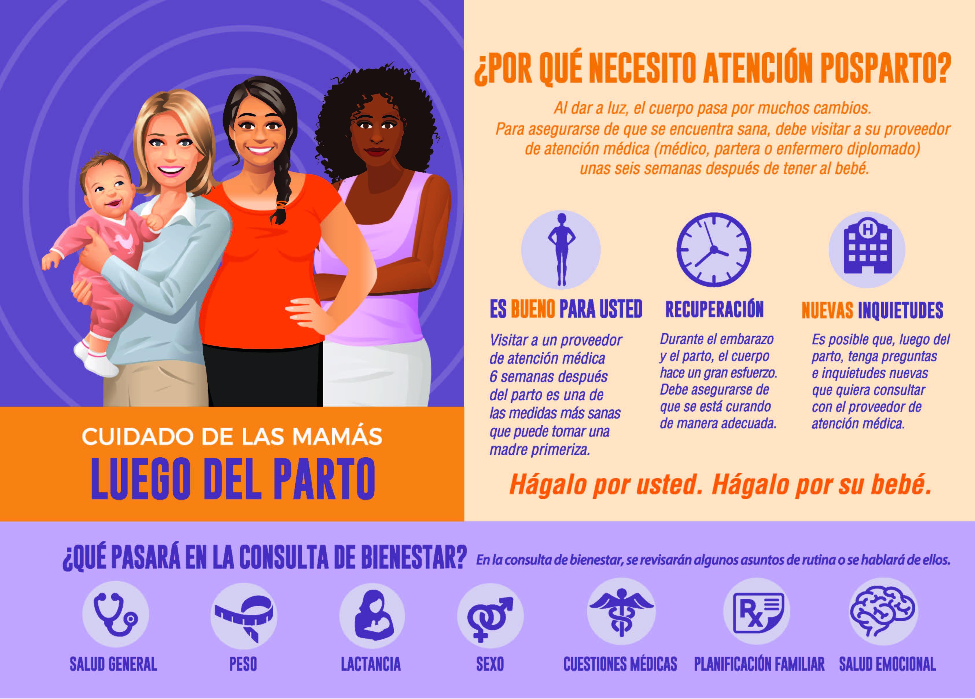 Postpartum Visit Infographic Flyer (Spanish)