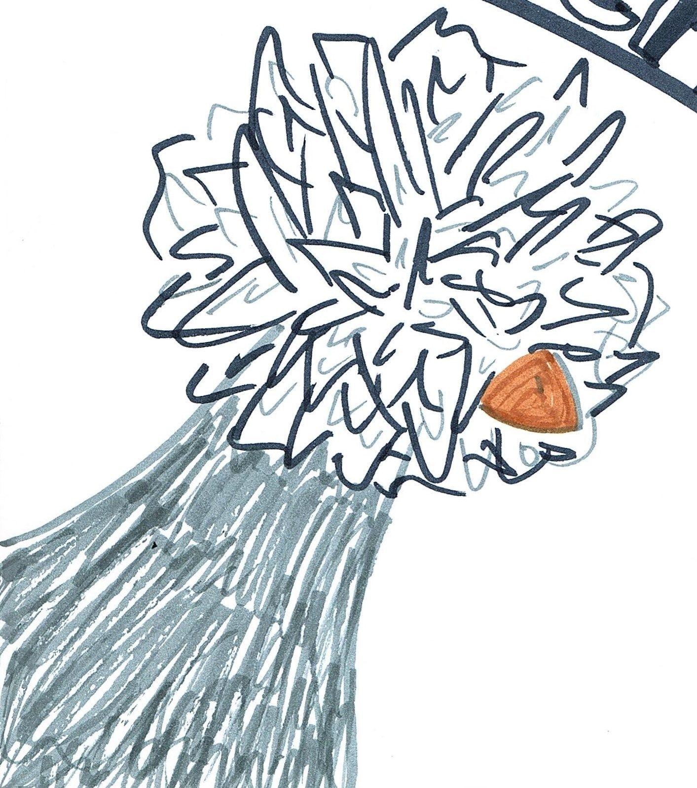 Cartooning - Evelyn S.