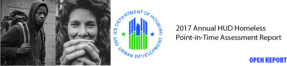 2017 Annual HUD Homeless Point-in-Time Assessment Report