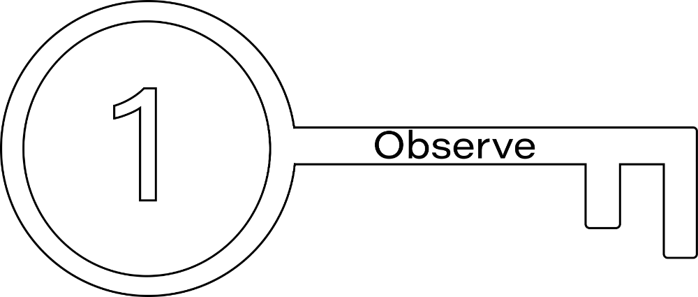 Key 1: Observe