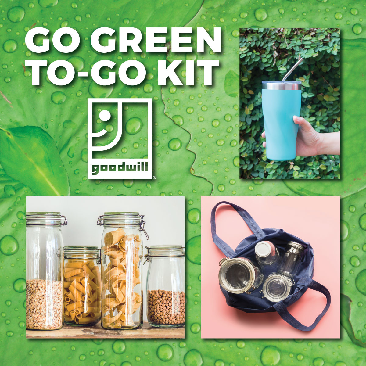 Go Green To-Go Kit