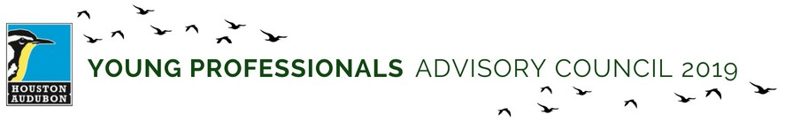 Young Professionals Advisory Council Webpage