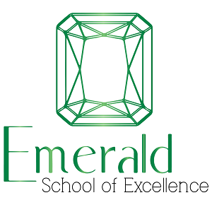 Emerald School of Excellence
