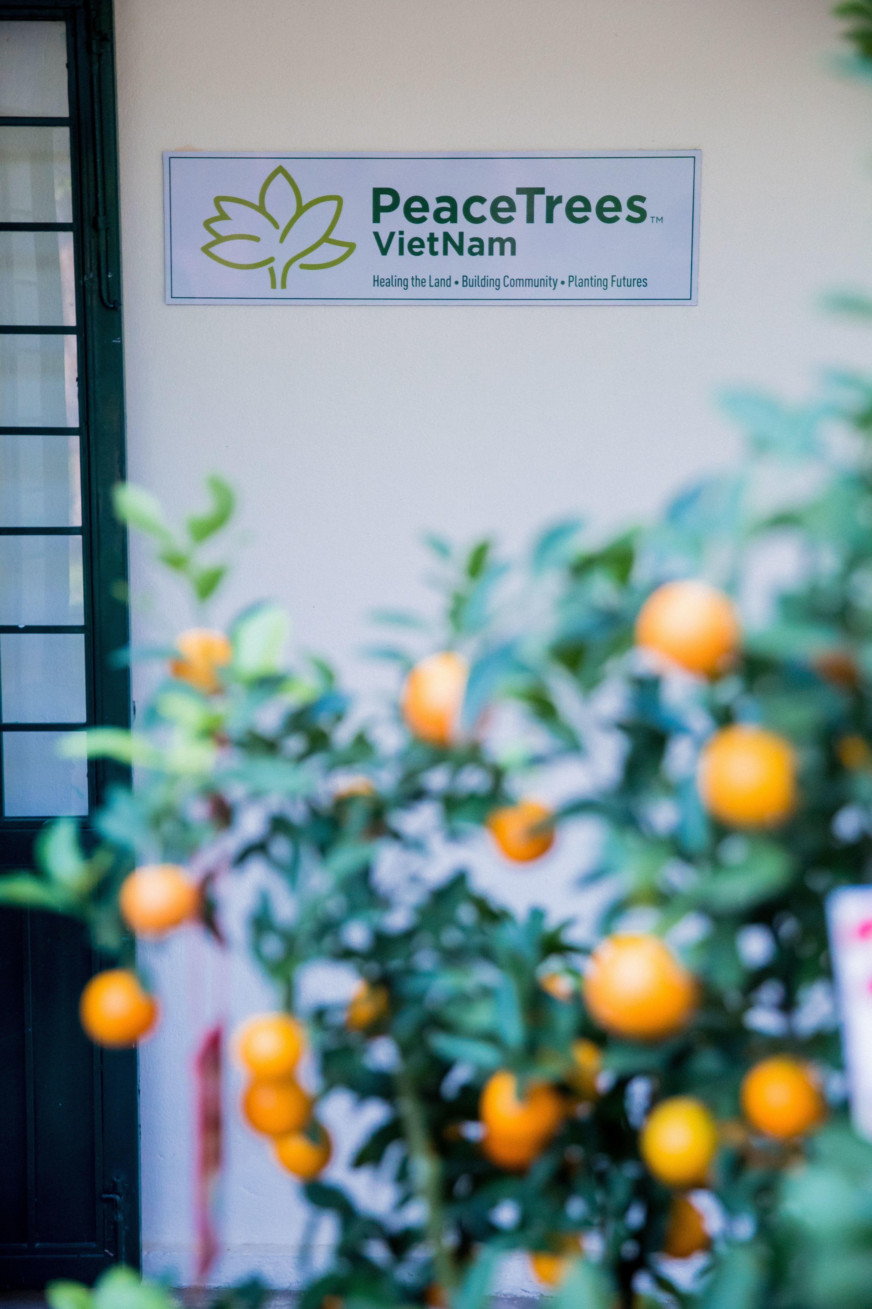 26 Years of Partnership and Peacebuilding in Vietnam