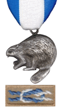 Silver Beaver Award Nominations Due March 31, 2021