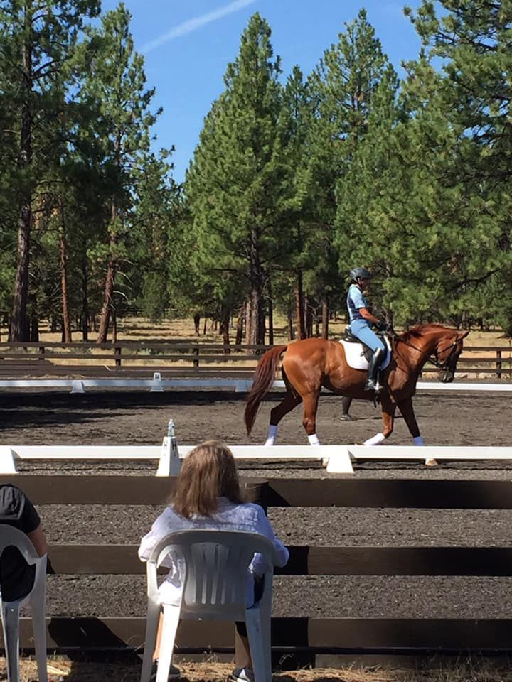 Oregon Dressage Society's Linda S. Acheson Education Fund  at The Dressage Foundation Awards Grants to ODS Chapters