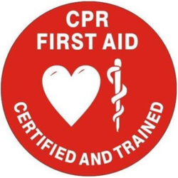 Pediatric CPR and First Aid Training
