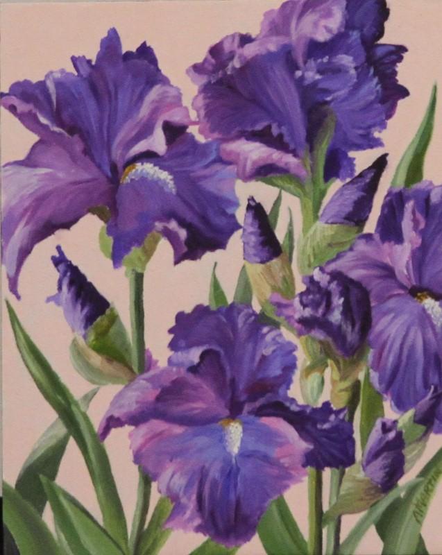 Simply Iris-sistible