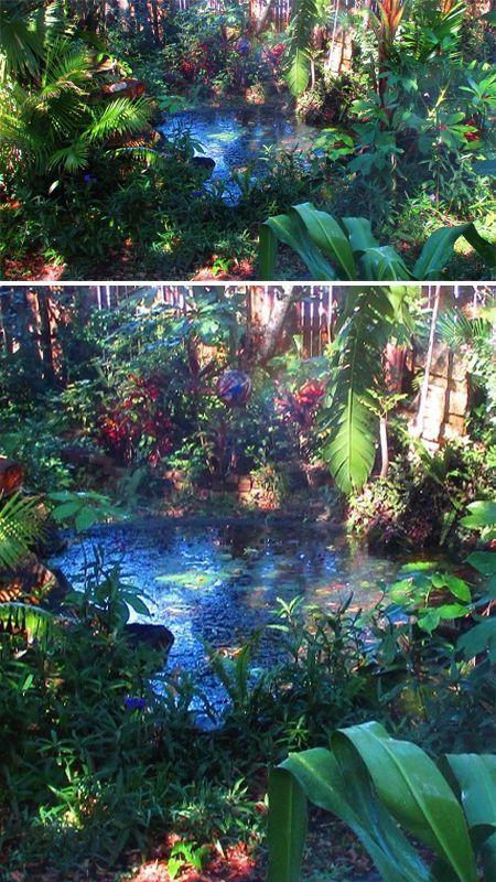 Janett's Pond