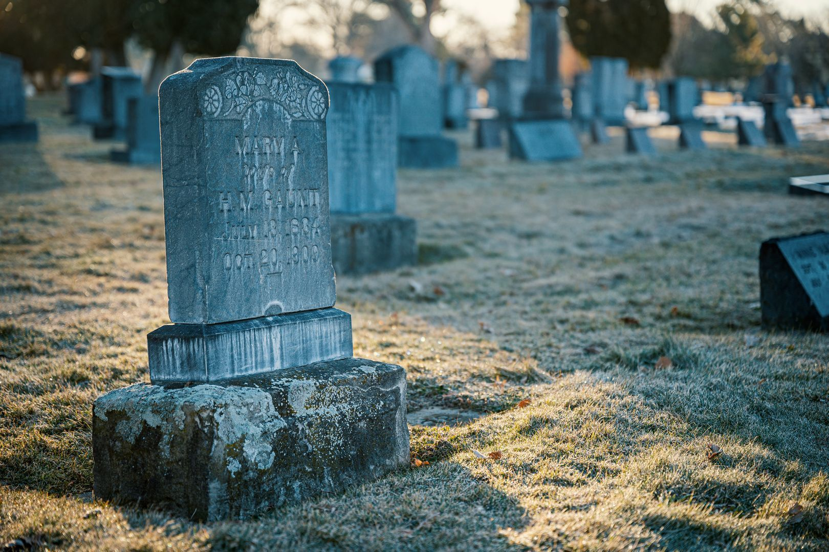 Discounted burial plots