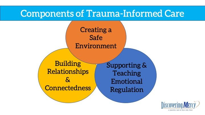 Discovering MErcy-Components of Trauma-Informed Care Graphic