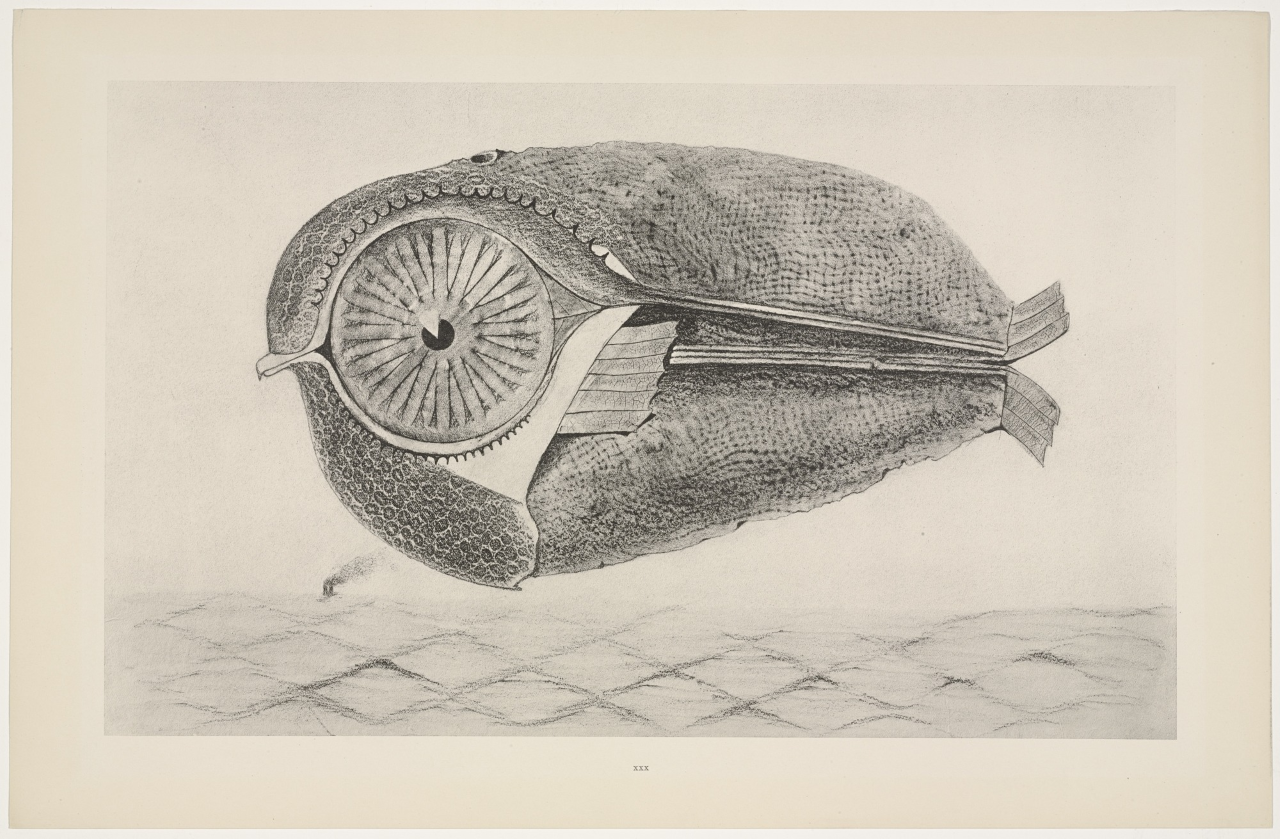 The Art of Max Ernst
