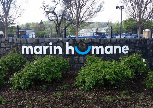Marin Humane
