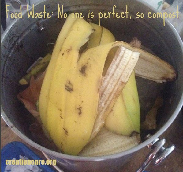 Food Waste: No one is perfect, so compost
