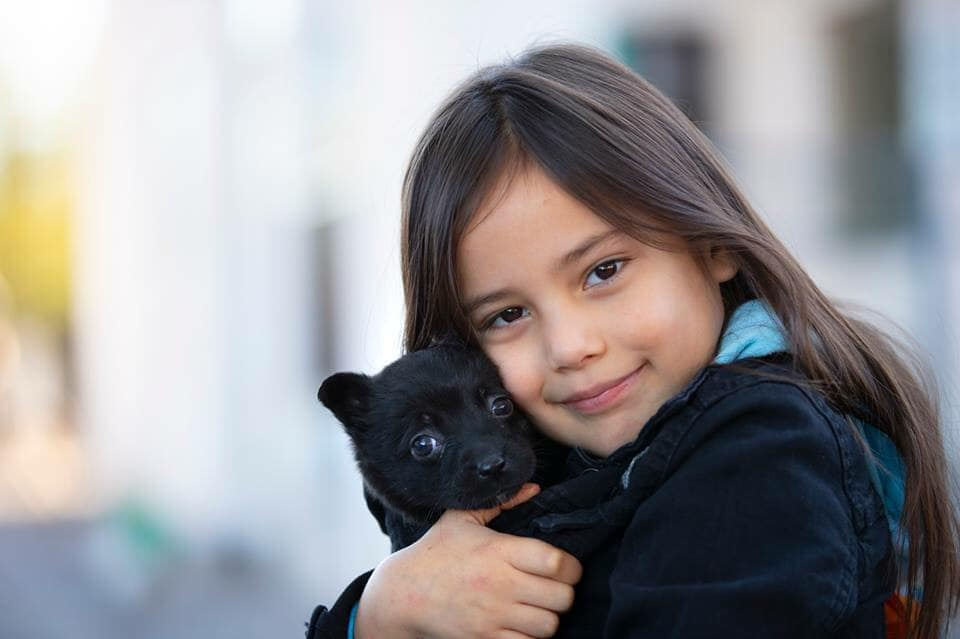 """Primavera Hosts PACC's First """"Tucson Homeless Pet Connect"""" Event"""