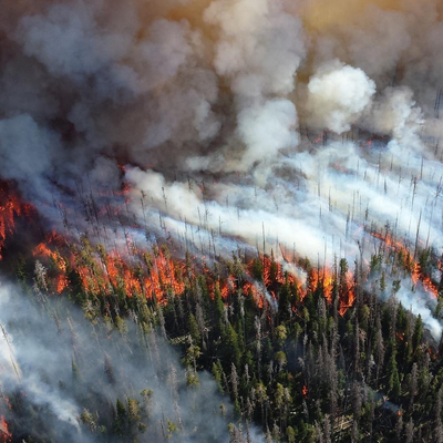 Advocacy Alert: Weigh In on Workplace Wildfire Smoke Protections