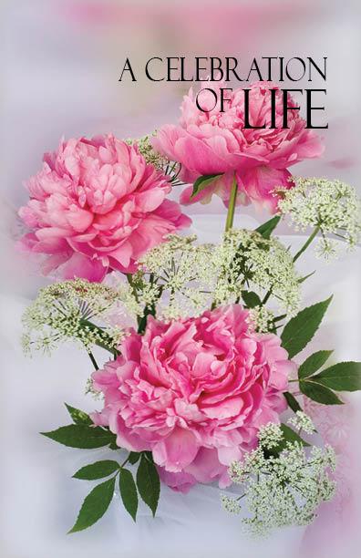 PRBK00 Pink Rose