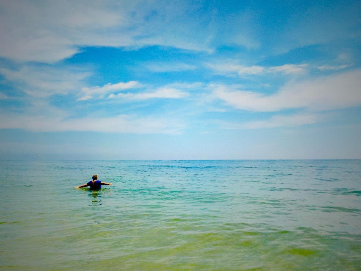 """The Last Refuge?"" by J. Walker Fischer of Ormond Beach"