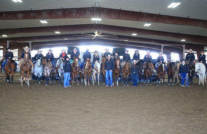 2021 Colt Sale Raises Over $200,000 for Natural Horsemanship Program