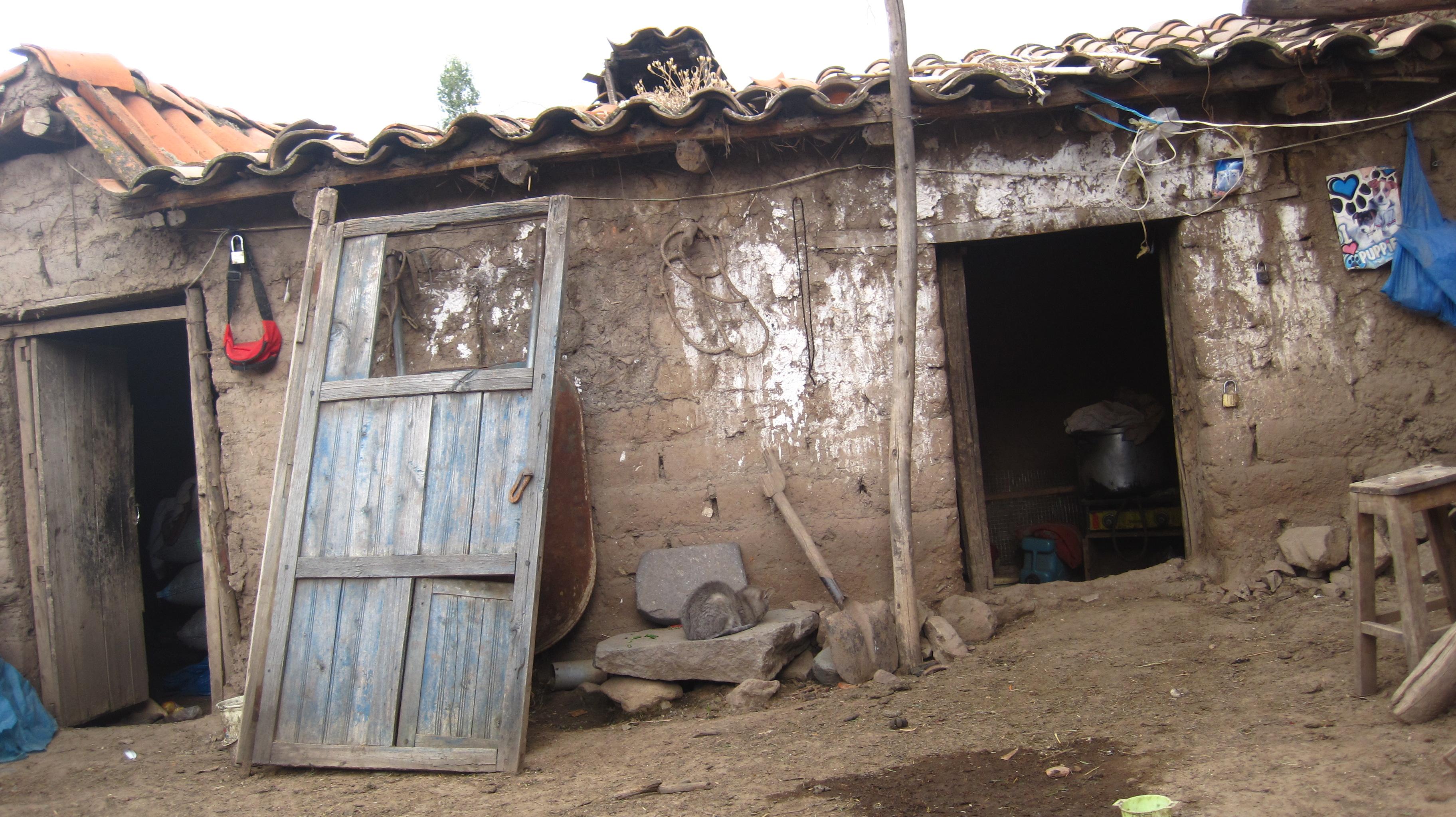Hut in Pomacanchi (Peru)