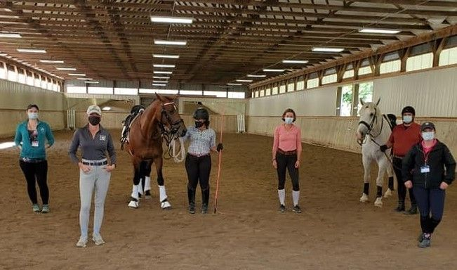 Grants Available from The Dressage Foundation for Educational Dressage Events