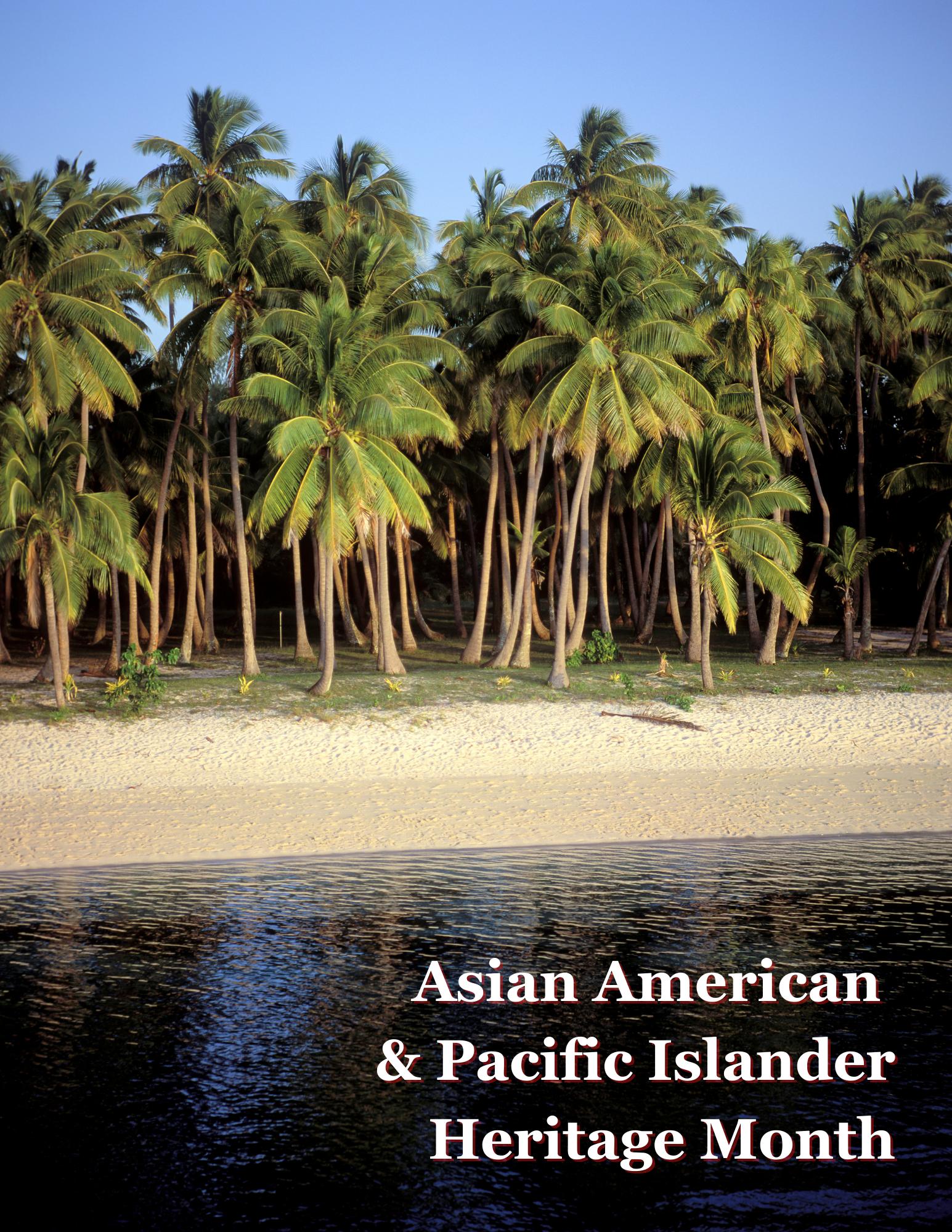 Dense palm tree forest near the shoreline of a black ocean