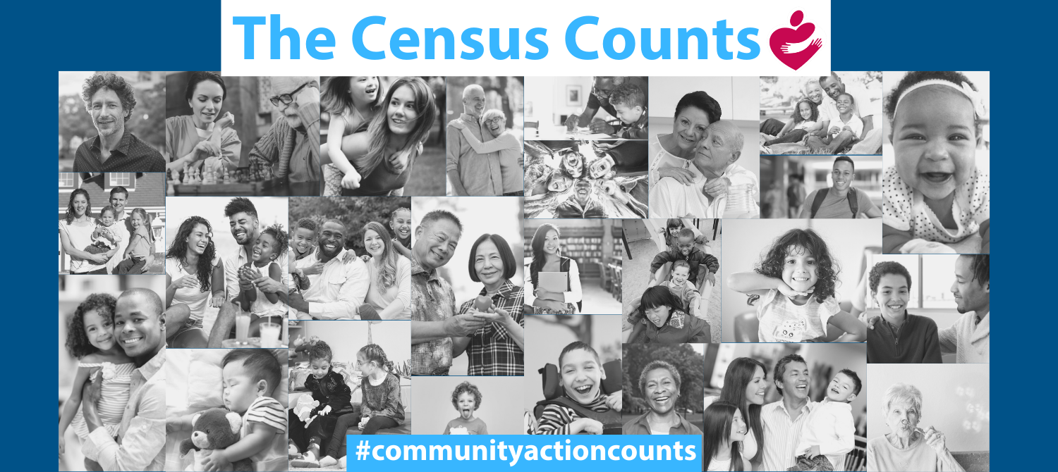 Take the 2020 Census Online