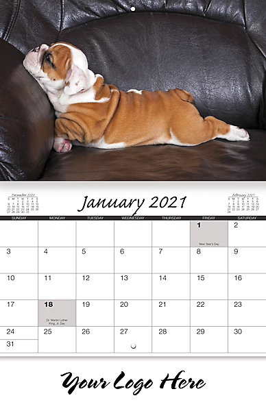 CANINE COMPANIONS 13-MONTH CALENDAR