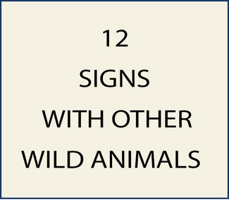 12. M22915 - Signs with Wild Boar, Beavers, Squirrels, Rabbits and Racoons