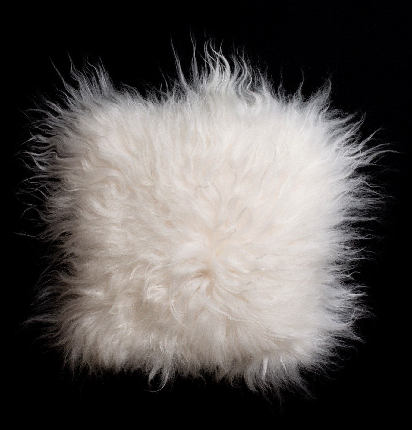 "Ann Carlson - ""Sheepskin Pillow #2"""