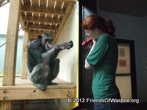 Dar interacts with a caregiver through the glass