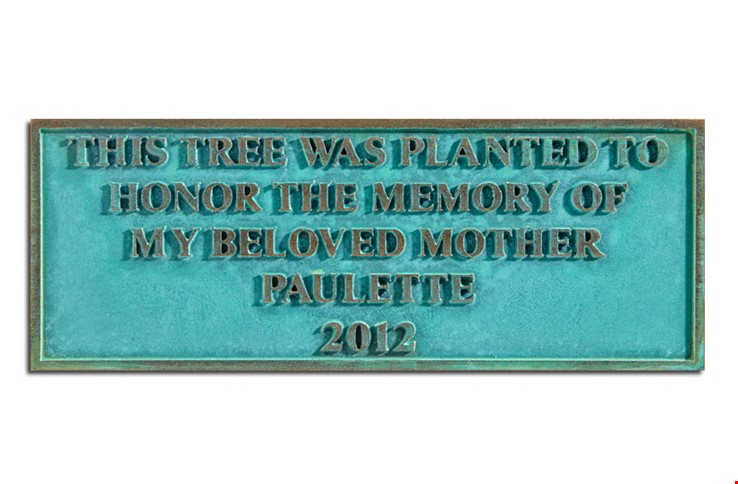 M7537 -  Precision Machined Bronze Memorial Tree Plaque with Green Verde Patina