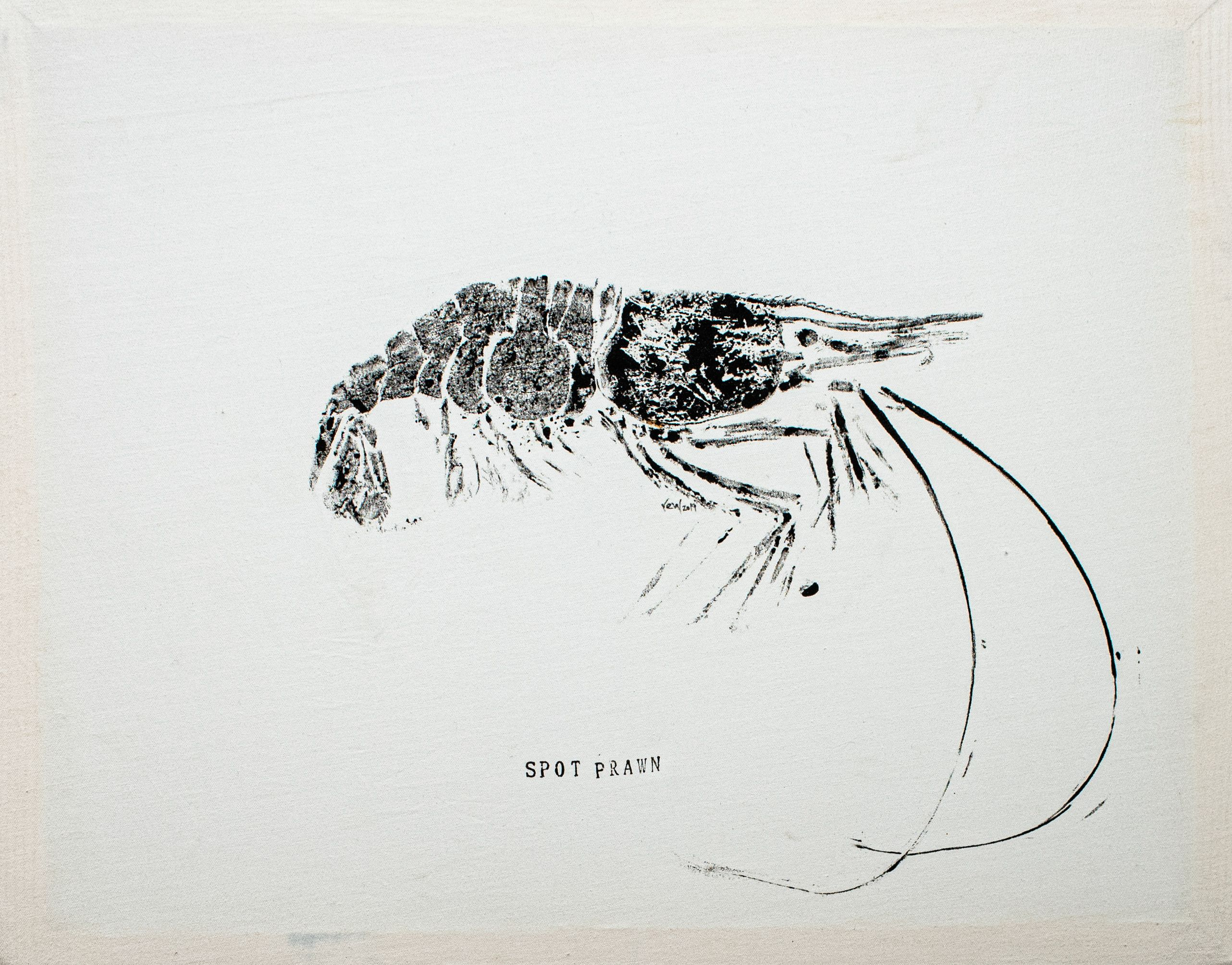 "Rachel Walton - ""Spot Prawn, Old Growth #2"""