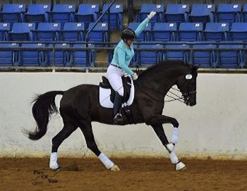 Dressage at Lexington 2015 Hosts Show's First Two-Tempi Challenge