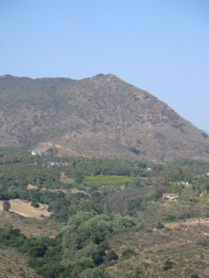 Mt. Gavilan