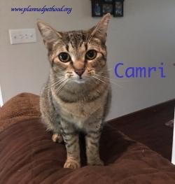 Camri