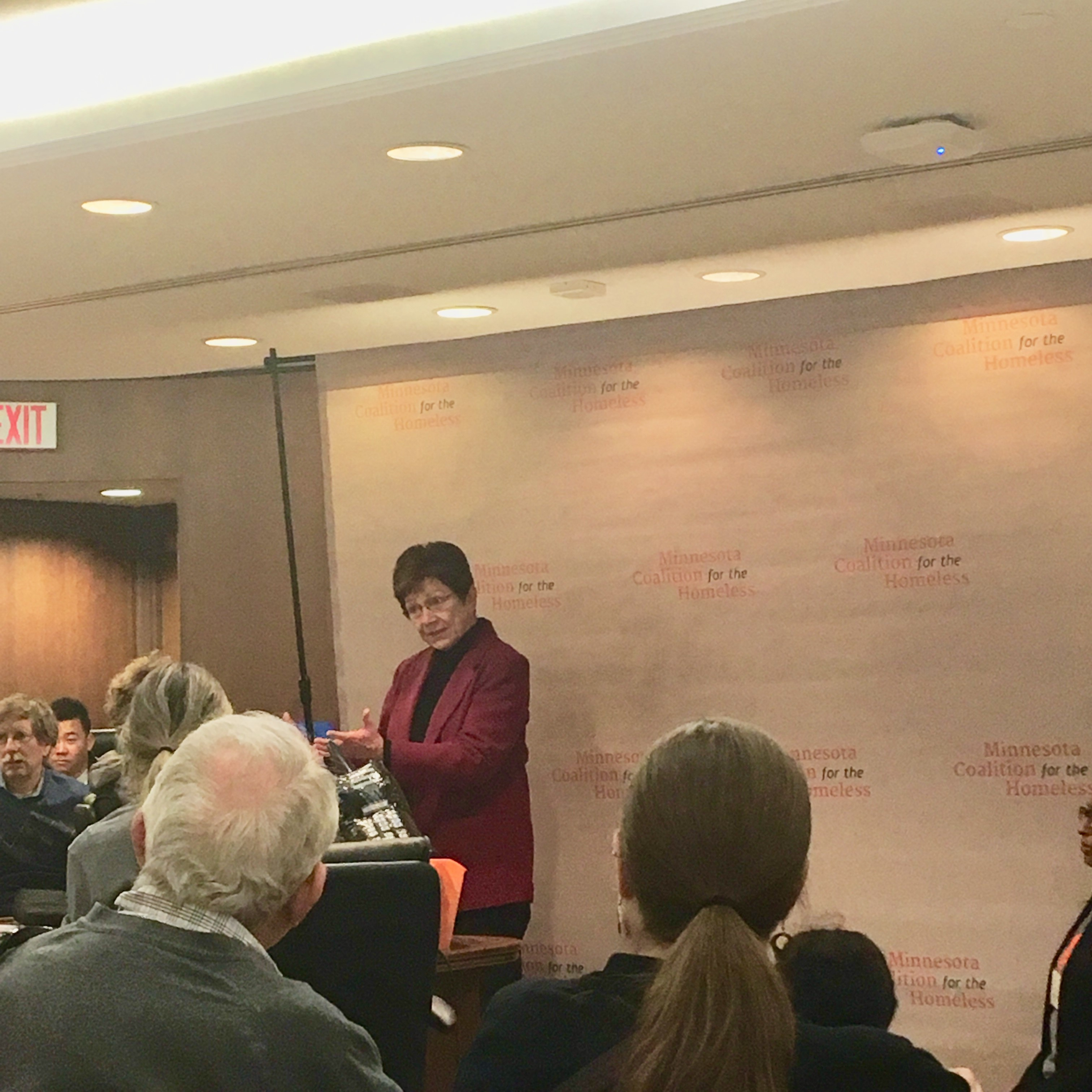 Rep. Alice Hausman speaking to Day on the Hill participants
