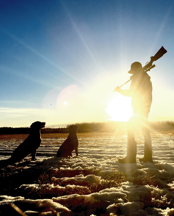 Looking Out for Your Service Dog During Game Hunting Season